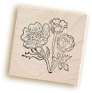Paper Source stamp