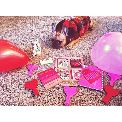 a dog with paper source valentines
