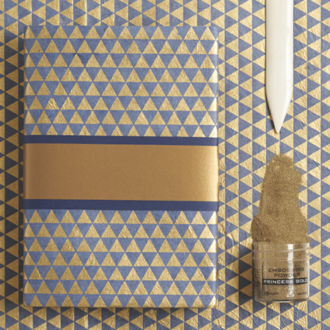 blue and gold book cover