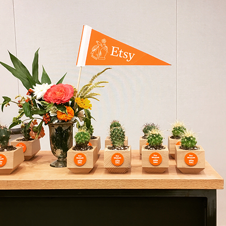 succulents on a table with an orange pennant
